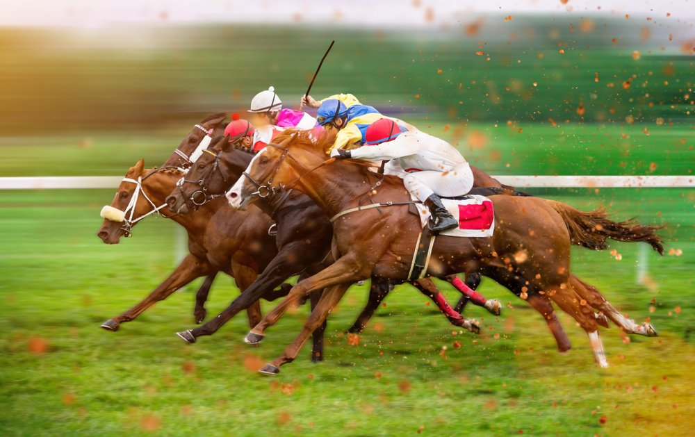 horse racing sprint finish